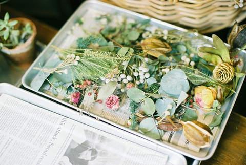 Как высушить цветы для гербария